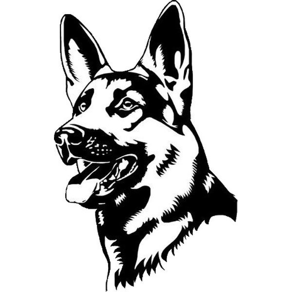 K9 Thorn Tactical Harness